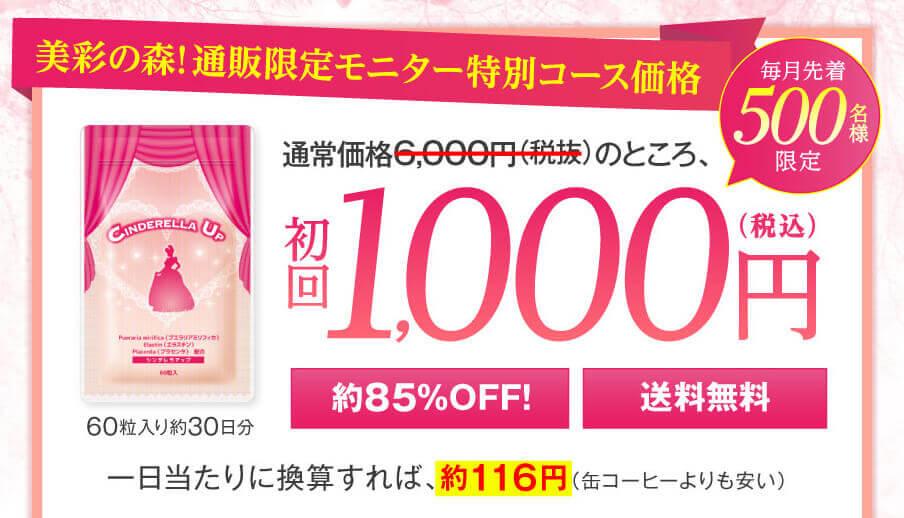 初回1000円シンデレラアップ